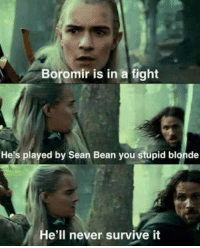 <p>Poor Boromir.</p>: Boromir is in a fight  He's played by Sean Bean you stupid blonde  e'll never survive it <p>Poor Boromir.</p>