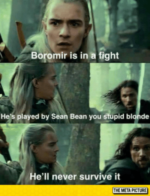 epicjohndoe:  Poor Boromir: Boromir is in a fight  He's played by Sean Bean you stupid blonde  He'll never survive it  THE META PICTURE epicjohndoe:  Poor Boromir