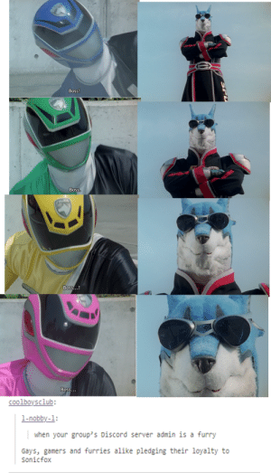 Tumblr, Furry, and Boss: Boss!  Boss.  ANERY  Boss...!  Boss...  coolboysclub:  1-nobby-1:  when your group's Discord server admin is a furry  Gays, gamers and furries alike pledging their loyalty to  Sonicfox I pledge allegiance to Lord Fursuit