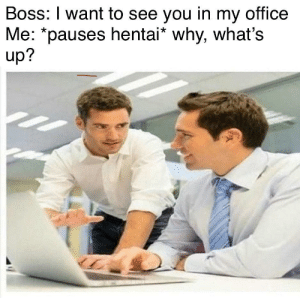 meirl: Boss: I want to see you in my office  Me: *pauses hentai* why, what's  up? meirl