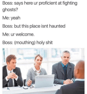 Shit, Yeah, and Boss: Boss: says here ur proficient at fighting  ghosts?  Me: yeah  Boss: but this place isnt haunted  Me: ur welcome.  Boss: (mouthing) holy shit  G: FheFunnyIntrover