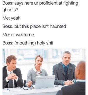 Shit, Yeah, and Boss: Boss: says here ur proficient at fighting  ghosts?  Me: yeah  Boss: but this place isnt haunted  Me: ur welcome.  Boss: (mouthing) holy shit  1G: The Funnyintrovert
