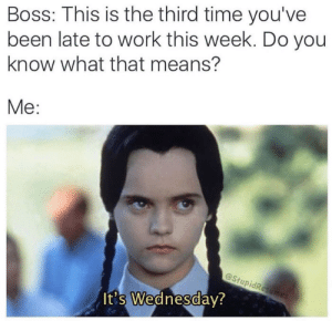 Me irl: Boss: This is the third time you've  been late to work this week. Do you  know what that means?  Me:  @StupidResumes  It's Wednesday? Me irl