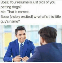 "Dogs, Http, and Resume: Boss: Your resume is just pics of you  petting dogs?  Me: That is correct.  Boss: [visibly excited] w-what's this little  guy's name? <p>It truly is… via /r/wholesomememes <a href=""http://ift.tt/2EvcxIf"">http://ift.tt/2EvcxIf</a></p>"