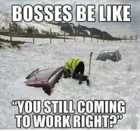Bosses Be Like: BOSSES BE LIKE