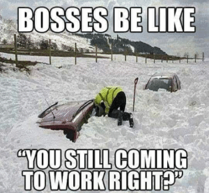 Bosses Be Like: BOSSES  BE LIKE  TO WORKRIGHTP