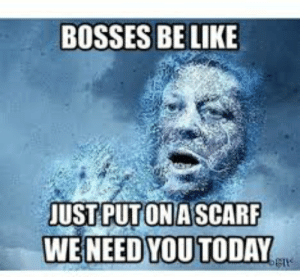 Bosses Be Like: BOSSES BE LIKE  UST PUTONASCARF  WE NEED YOU TODAY
