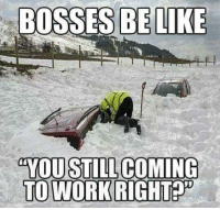 Funny Snow Memes: BOSSES BE LIKE  YOU STILL COMING  TO WORK RIGHT