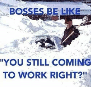"Bosses Be Like: BOSSES BE LIKE  ""YOU STILL COMING  TO WORK RIGHT?"""