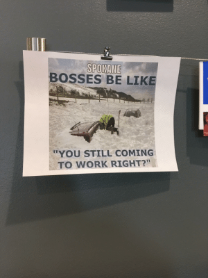 "Found at my orthodontist's office: BOSSES BE LIKE  ""YOU STILL COMING  TO WORK RIGHT?"" Found at my orthodontist's office"