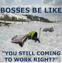Bosses Be Like: BOSSES BE LIKE  YOU STILL COMING  TO WORK RIGHT?""