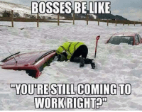 "Bosses Be Like: BOSSES BE LIKE  ""YOU'RE STILL COMING TO  WORKRIGHT"