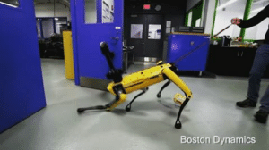 a-wandering-intern:  tyrannosaurus-rex:   acreaturecalledgreed: stop bullying him Let the yellow boy do his job   What i love about boston dynamics bots is how, despite being obviously robots, their movement and mannerisms are so close to those of real animals that we feel compelled to think they are animals.   Nonethless, they are  good boys, and i love them.  : Boston Dynamics a-wandering-intern:  tyrannosaurus-rex:   acreaturecalledgreed: stop bullying him Let the yellow boy do his job   What i love about boston dynamics bots is how, despite being obviously robots, their movement and mannerisms are so close to those of real animals that we feel compelled to think they are animals.   Nonethless, they are  good boys, and i love them.