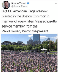 Memes, American, and Boston: BostonTweet  @BostonTweet  37,000 American Flags are now  planted in the Boston Common in  memory of every fallen Massachusetts  service member from the  Revolutionary War to the present.