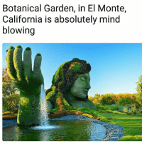 Beautiful, Bucket List, and Memes: Botanical Garden, in El Monte,  California is absolutely mind  blowing Wow that's beautiful. Forsure on my Bucket list