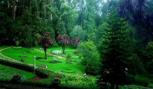 Tamil, Botanical Garden, and Sooty: Botanical garden Sooty Tamil Nd