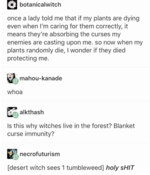 plants died to protect you: botanicalwitch  once a lady told me that if my plants are dying  even when I'm caring for them correctly, it  means they're absorbing the curses my  enemies are casting upon me. so now when my  plants randomly die, I wonder if they died  protecting me  mahou-kanade  whoa  alkthash  Is this why witches live in the forest? Blanket  curse immunity?  necrofuturism  [desert witch sees 1 tumbleweed] holy SHIT plants died to protect you