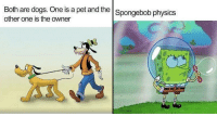 31 Hilariously Enlightening Memes That Demonstrate How Absurd Cartoon Logic Is: Both are dogs. One is a pet and the Spongebob physics  other one is the owner 31 Hilariously Enlightening Memes That Demonstrate How Absurd Cartoon Logic Is
