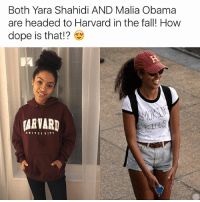 Dope, Fall, and Memes: Both Yara Shahidi AND Malia Obama  are headed to Harvard in the fall! How  dope is that!?  KILLS  UNIVERSITY