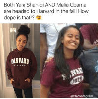 Dope, Fall, and Girls: Both Yara Shahidi AND Malia Obama  are headed to Harvard in the fall! How  dope is that!?  ARVARD  @blackstagram__ Harvard is lucky to have these strong girls! @expression_tees blackpride blackandproud blackpower blackexcellence melaninonfleek melaninpoppin blackbeauty blackisbeautiful blackgirlmagic blackgirlsrock naturallyshesdope blackgirl blackgirls blackwomen blackwoman blackout blackqueens blackgirlskillingit