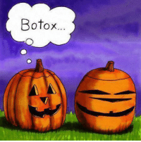 Memes, 🤖, and Botox: Botox... Face it a little Botox will make you more gourd-geous.  #UnKNOWN_PUNster