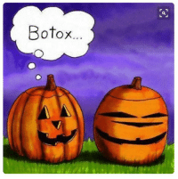 Memes, Pictures, and Awesome: Botox For more awesome holiday and fun pictures go to... www.snowflakescottage.com