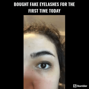 Fake, Memes, and Videos: BOUGHT FAKE EYELASHES FOR THE  FIRST TIME TODAY  S Stumbler RT @StumblerBeauty: For more amazing beauty videos follow @StumblerBeauty or visit https://t.co/BFsizhkHgJ https://t.co/NbxBnzseyT