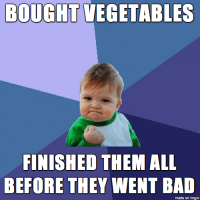 "Bad, Tumblr, and Blog: BOUGHT VEGETABLES  FINISHED THEM ALL  BEFORE THEY WENT BAD  made on imgur <p><a href=""http://memehumor.net/post/174073343687/truly-an-accomplishment"" class=""tumblr_blog"">memehumor</a>:</p>  <blockquote><p>Truly An Accomplishment</p></blockquote>"