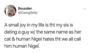 tht: Bounder  @DawgBelly  A small joy in my life is tht my sis is  dating a guy w/ the same name as her  cat & human Nigel hates tht we all call  him human Nigel.