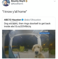"Let him in: Bounty  Boy$  @KoolKerm  ""I know y'all home""  ABC13 Houston @abc13houston  Dog escapes, then rings doorbell to get back  inside abc13.co/2OV6bUq  @WILL ENT  nest  Greg Basel/Storyful Let him in"