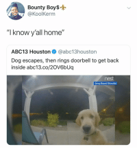 "Lmao: Bounty Boy$o  @KoolKerm  ""I know y'all home""  ABC13 Houston @abc13houston  Dog escapes, then rings doorbell to get back  inside abc13.co/20V6bUq  Greg Basel/Storyful Lmao"