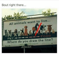 Top of the food chain baby - FOLLOW @super.weenie.hut.juniors FOR MORE CONTENT: Bout right there..  All animals want to live...  FOOD  Where do you draw the line?  billboard ram  JCDecaux Top of the food chain baby - FOLLOW @super.weenie.hut.juniors FOR MORE CONTENT