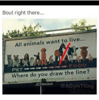 25 Best Where Do You Draw The Line Memes Living Food Memes Draws