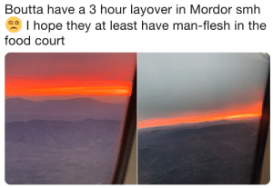 Gorgoroth International Airport has really gone downhill: Boutta have a 3 hour layover in Mordor smh  I hope they at least have man-flesh in the  food court Gorgoroth International Airport has really gone downhill