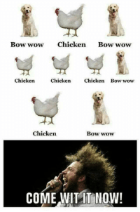 Wow: Bow wow Chicken Bow wow  Chicken  Chicken  Chicken Bow wow  Chicken  Bow wow  COME WITIT NOW!