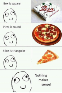 Nothing Makes Sense: Box is square  Pizza is round  Slice is triangular  Nothing  makes  sense!