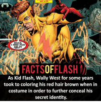 Batman, Facts, and Memes: BR  I NEED YOUR  HELP!  FACTSOFFLASH  As Kid Flash, Wally West for some years  took to coloring his red hair brown when in  costume in order to further conceal his  secret identity. ⚡️⚡️ - Wally West - (putting old facts in the new layout) - My other IG Accounts @facts_of_heroes @webslingerfacts @yourpoketrivia ⠀⠀⠀⠀⠀⠀⠀⠀⠀⠀⠀⠀⠀⠀⠀⠀⠀⠀⠀⠀⠀⠀⠀⠀⠀⠀⠀⠀⠀⠀⠀⠀⠀⠀ ⠀⠀------------------------ blackflash lindapark batman johnfox maxmercury impulse inertia professorzoom danielwest godspeed savitar flashcw theflash hunterzolomon therogues flashcw justiceleague wallywest eobardthawne grantgustin ezramiller like4like batmanvsuperman bartallen zoom flash barryallen youngjustice jaygarrick