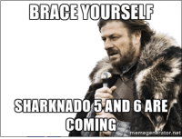 It was bound to happen; they got the greenlight: BRACE YOURSELF  SHARKNADO 5AND 6 ARE  COMING  Ntmemegenerator.net It was bound to happen; they got the greenlight