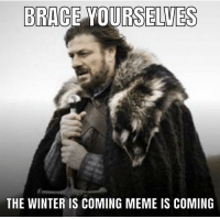 winter is coming: BRACE YOURSELUES  THE WINTER IS COMING MEME IS COMING