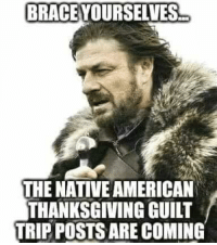 Memes, Native American, and Thanksgiving: BRACE YOURSELVES  THE NATIVE AMERICAN  THANKSGIVING GUILT  TRIP POSTS ARE COMING