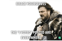I Voted: BRACE YOURSELVES  THE VOTED POSTED ARE  EVERYWHERE I Voted