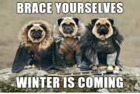 https://t.co/mf0E4Ta1IA: BRACE YOURSELVES  WINTER IS COMING https://t.co/mf0E4Ta1IA