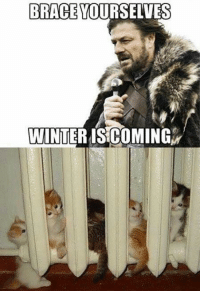 It already came to some places ;)  -Lady Sylwik: BRACE  YOURSELVES  WINTER IS COMING It already came to some places ;)  -Lady Sylwik