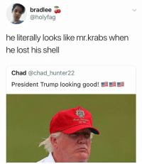 Mr. Krabs, Lost, and Good: bradlee  @holyfag  he literally looks like mr.krabs when  he lost his shell  Chad @chad_hunter22  President Trump looking good!  髫髫  Frunp ONG