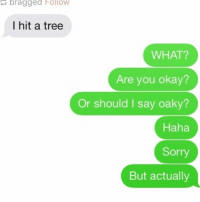 Funny, Instagram, and Kardashians: bragged Follow  I hit a tree  WHAT?  Are you okay?  Or should I say oaky?  Haha  Sorry  But actually sup . . . . . . . . . . text post textpost textposts relatable comedy humour funny kyliejenner kardashians arianagrande follow4follow f4f kanyewest like4like l4l tumblr tumblrtextpost sexualising lmao relateable lol hoeposts memes wififun oktweet funnymemes @perfectsayings @instagram @bitc.h