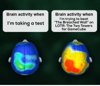 "Brain: Brain activity when  Brain activity when  I'm trying to beat  ""The Breached Wall"" on  LOTR: The Two Towers  for GameCube  I'm taking a testThe B reached ir on"