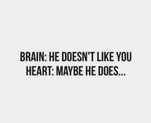 Brain, Heart, and You: BRAIN: HE DOESN'T LIKE YOU  HEART: MAYBE HE DOES