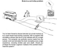 it doesn't matter, right? Right? @Martín Irani: Brain-in-a-vat trolley problem  You've been forced to choose between (a) a brain hooked up  to a super-duper-holy-fucking computer with a program that  simulates a person tied down to the railtrack and (b) a single  person. The computer can perfectly receive inputs from the  outside world and stimulate the brain recreating every single  experience, including terrible pain and death. Would you  privilege the human organism instead of this sentient brain-  machine system? it doesn't matter, right? Right? @Martín Irani