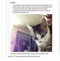 "Follow for more funny tumblr and textposts!!: bralpha:  so yesterday i got home from my best friend's birthday party and  thirty seconds later my sister comes into my room and asks me if  i can keep a secret and i said it depends and she pulled a  fucking cat out from behind her back and i was like ""i think we  can keop this between us""  his name is peanut and hes this country's most precious secret  well now 171 people know about this you had one job Follow for more funny tumblr and textposts!!"
