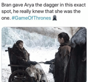 bran: Bran gave Arya the dagger in this exact  spot, he really knew that she was the  one.